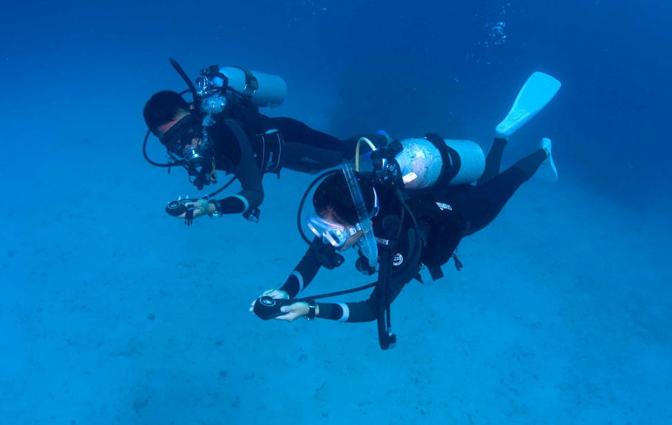 Why You Should Get Certified In Scuba Diving