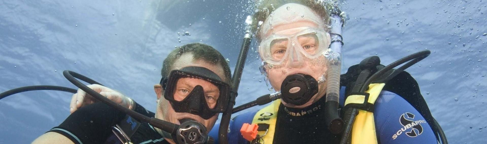 3 - Divers Up Close