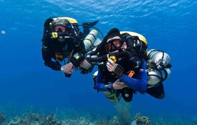 Training Dives